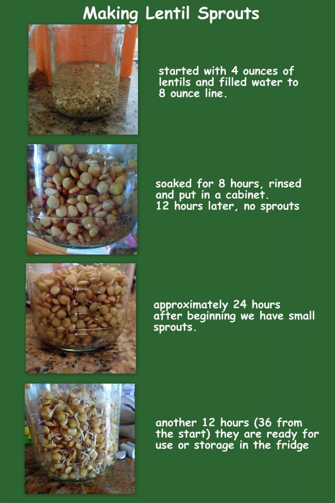How to make Lentil Sprouts