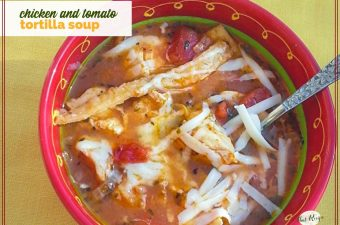 "bowl of tortilla soup with text overlay ""Chicken and tomato tortilla soup"""