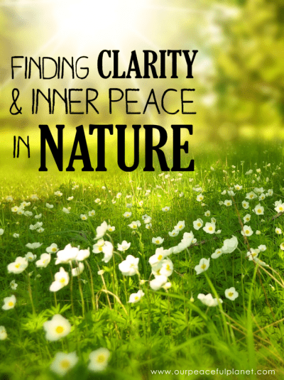 Finding-Clarity-and-Inner-Peace-in-Nature-2