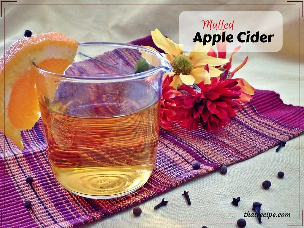 Mulled Apple Cider - warm up your autumn and winter festivities with some spicy apple cider.