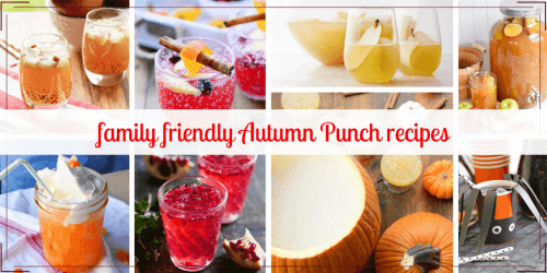 Family friendly fall punch recipes - alcohol free punch recipes with fall flavors like apple, cranberry, pomegranate and pumpkin spice. #fall #punchrecipes #alcoholfree