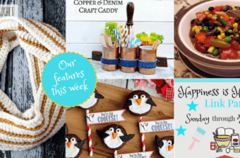 Winter Fun on Happiness is Homemade