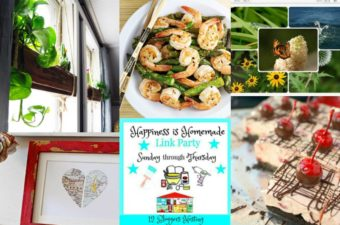 collage of plants in window, shrimp stirfry, photos, cherry cheesecake and heart map decoration.