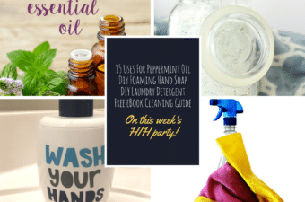 Natural and Frugal Spring Cleaning Tips from Happiness is Homemade