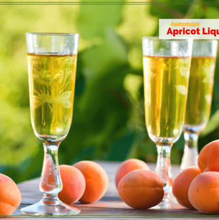 """glasses of liqueur and apricots on a table with text """"Homemade Apricot liqueur"""""""