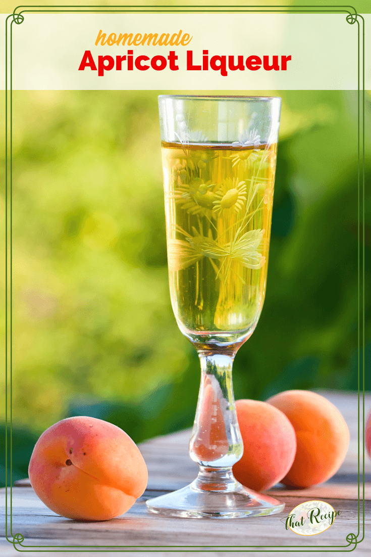 Homemade Apricot liqueur. Make your own apricot flavored cordial. Makes a great gift. #homemadeliqueurs #apricotliqueur #homemadegifts