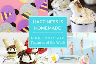Happiness is Homemade Summer Treats and Decor