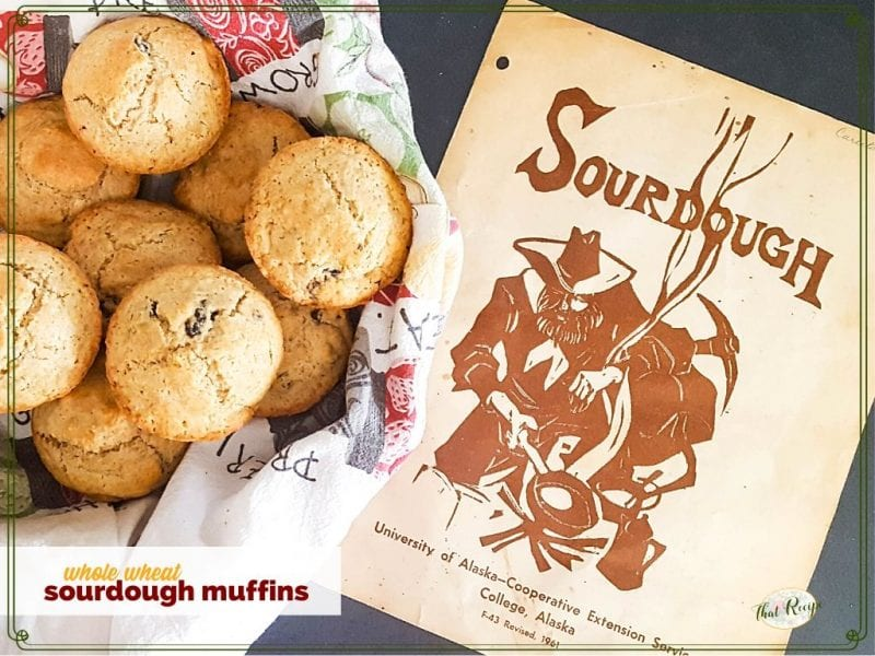 whole wheat muffins in a bowl with vintage sourdough pamphlet in background