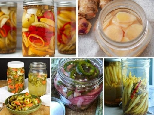 collage of pickle images