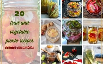 "collage of pickle images with text overlay ""20 fruit and vegetable pickles besides cucumbers"""